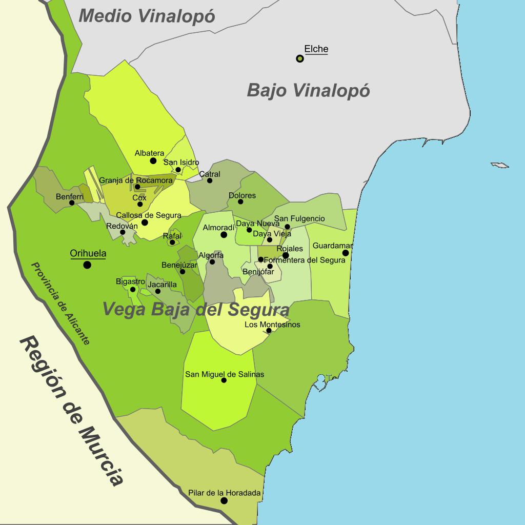 Guardamar nuevo centro económico de la Vega Baja.